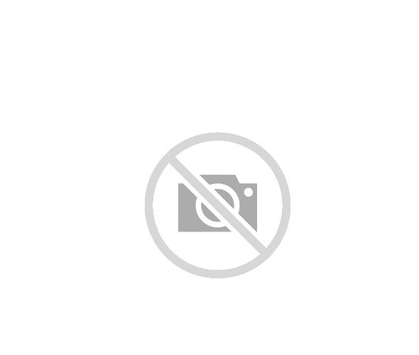 Intreruptor automat 3P C 6kA 63A